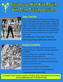 2015  high kick team Services